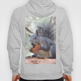 Squirrel Snack Hoody