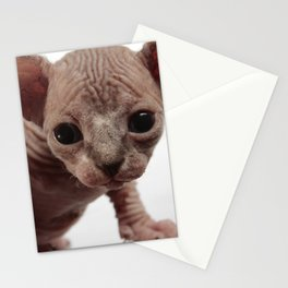 Freaky Cute Furless Sphynx Kitten Stationery Cards