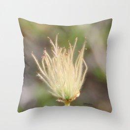 Apache Plume Throw Pillow
