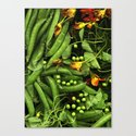 Nasturtiums and Peas by farmtoscanner