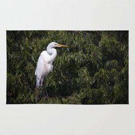 Great White Egret Rug