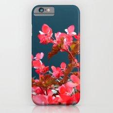 Bay Side Pink Slim Case iPhone 6s