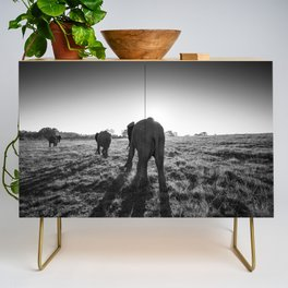 Group of African elephants walking at sunset Credenza