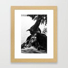 Star Lake Twist Framed Art Print