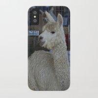 alpaca iPhone & iPod Cases featuring White Alpaca by Deborah Janke
