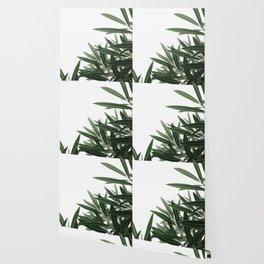 Natural Background 46 Wallpaper