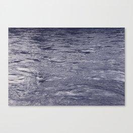 through the streams Canvas Print