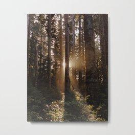 Larch Mountain Sunset Metal Print
