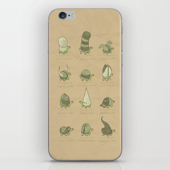 A Study of Turtles iPhone & iPod Skin