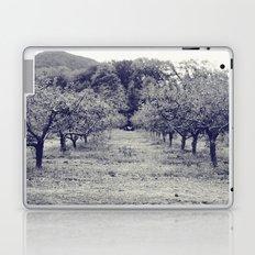 apple orchard Laptop & iPad Skin