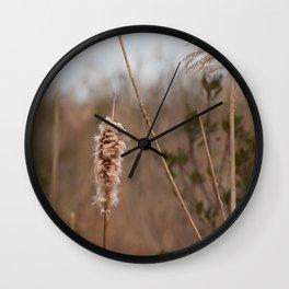 Cape May Nature Walk Wall Clock