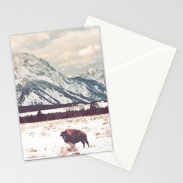Bison & Tetons Stationery Cards