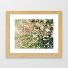 Field 3 Framed Art Print