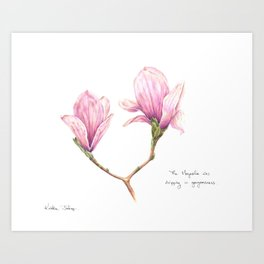 The Magnolia was dripping in gorgeousness Art Print