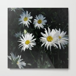 Bunch of Daises Metal Print
