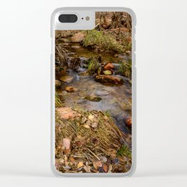 Winter Stream 1009 - Zion_National_Park, Utah Clear iPhone Case