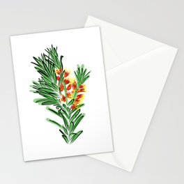 Beautiful Australian Native Bottlebrush Flower Stationery Cards