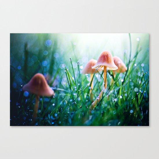 Fairytopia Canvas Print