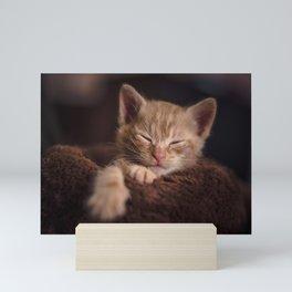 Sleepy cat Mini Art Print