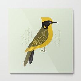 Helmeted Honeyeater, Bird of Australia Metal Print