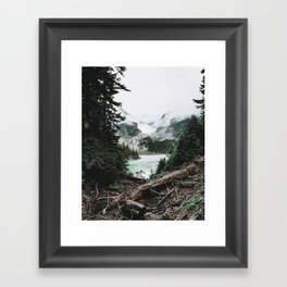 Into the Wild XIV / Washington Framed Art Print