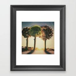 three seasons  Framed Art Print