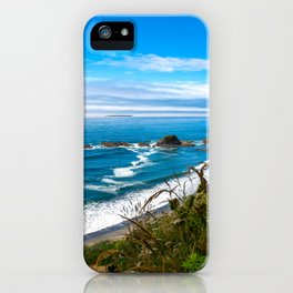 Pacific View - Coastal Scenery in Washington State iPhone Case