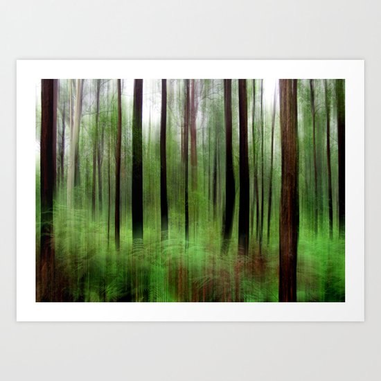 Eucalypts & Bracken Art Print