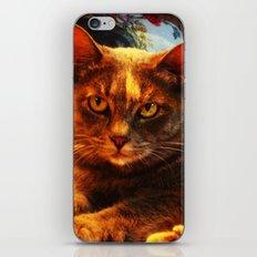 cat in bazaar iPhone & iPod Skin