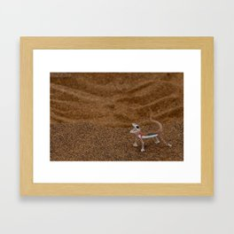Palmetto Gecko Framed Art Print