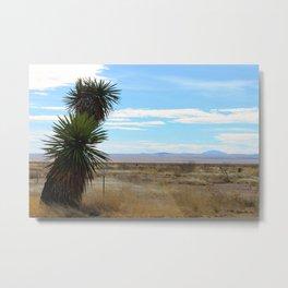 Yucca in Marfa, Texas Metal Print
