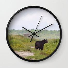 Adult Black Bear Wall Clock