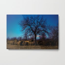 Scenic tree on farm  Metal Print
