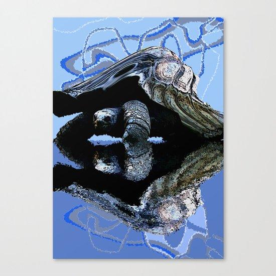 Blue Turtle Canvas Print