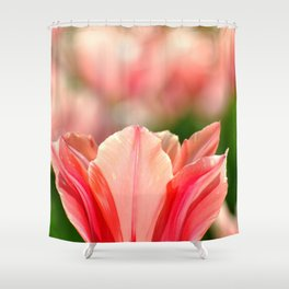 SPRING PINK AND RED TULIP Shower Curtain