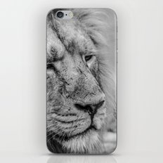 Face Of Thought iPhone & iPod Skin