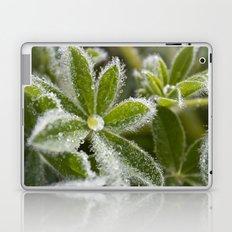 Morning Dew I Laptop & iPad Skin