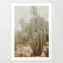 Fade Desert Art Print