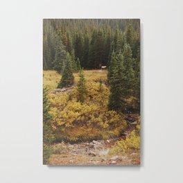 Rocky Mountain Creek Elk Metal Print