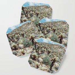 Mountain Cholla Coaster