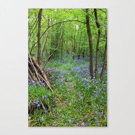 Magical Place Canvas Print