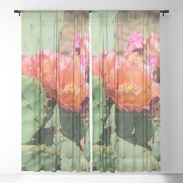 Cacti in Bloom 6 Sheer Curtain