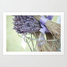 dried lavender Art Print