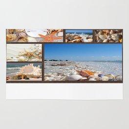 Seashell Treasures From The Sea Rug