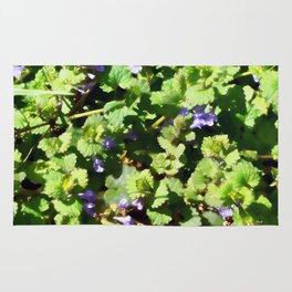 Ground Ivy 06 Rug