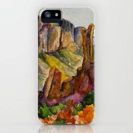 Big Bend National Park iPhone Case