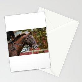 Bay Horse Stationery Cards