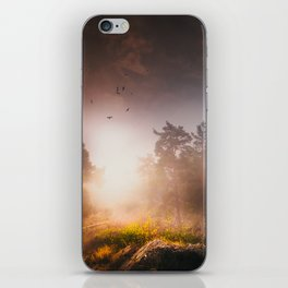 Cleansing iPhone Skin