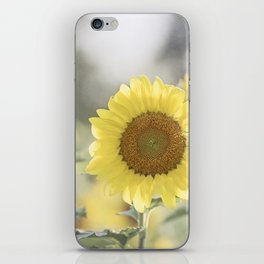 Sunflower Flower Photography, Yellow Sunflowers Floral Nature Photography iPhone Skin