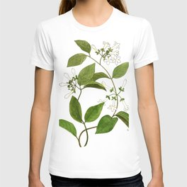 Stephanotis Vine T-shirt